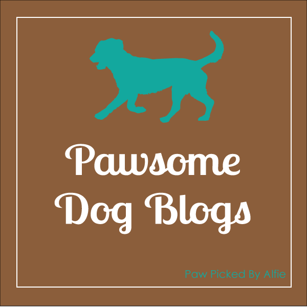 My Favourite Dog Blogs