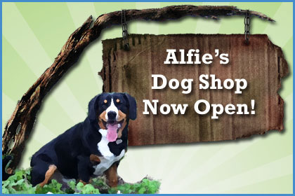 Post image for Alfie's Dog Shop is Now Open