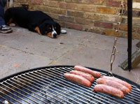 Post image for The BBQ that inspired a Never Ending Game of Fetch