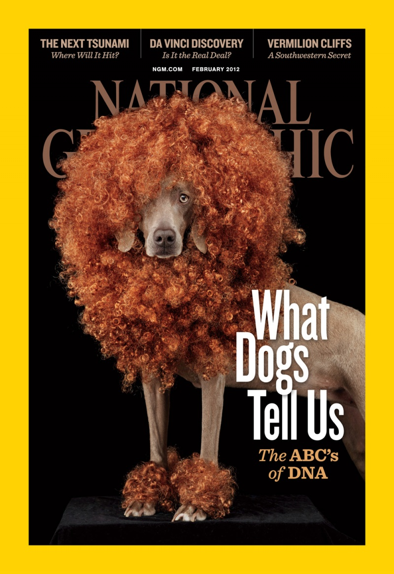 National Geographic Cover (February 2012 Issue) ©Robert Clark/National Geographic