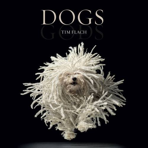 dogs-gods-photography-book