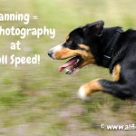 Panning-equals-photo-full-speed