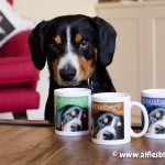 entlebucher-mountain-dog-gifts-mugs-2972