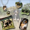 Entlebucher-Mountain-Dog-Shop-Photo-Gifts-dog tags, necklace, cushion, note book, key chain