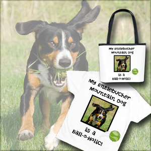 Entlebucher-Mountain-Dog-Shop-balloholic-ball-crazy-fetch