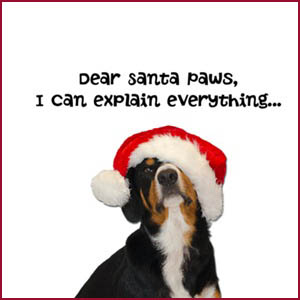 Dear Santa Paws - I can Explain Everything: Entlebucher Mountain Dog Christmas Gift Shop