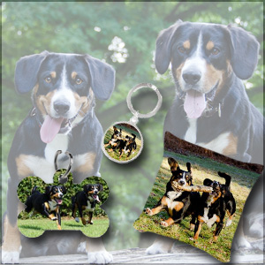 Entlebucher Mountain Dog Gift Shop Best Friends