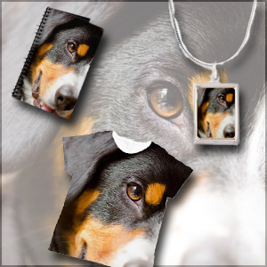 Entlebucher Mountain Dog Gift Shop - Necklace, Note book, all over print t-shirt with a smiley Entle face
