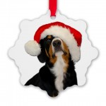 dear_santapaws_i_can_explain_ornament