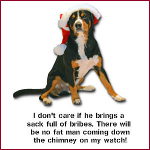 You can't bribe an Entlebucher on duty: Christmas shop